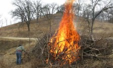 brush-pile-burn